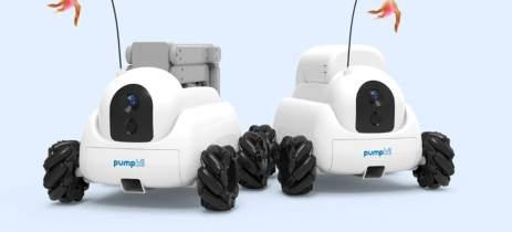 Pumpkii: o robô para fazer companhia para o seu... pet!