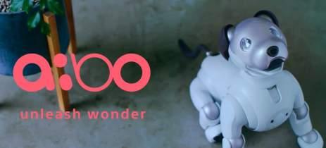 Aibo, cão robô da Sony, agora vai esperar seus donos na porta