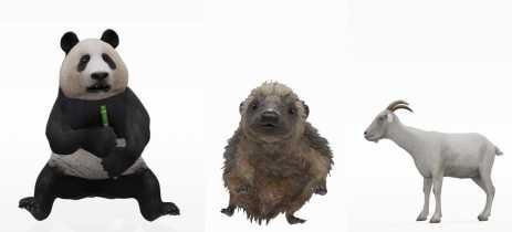 Veja como fazer animais em 3D com Realidade Aumentada do Google