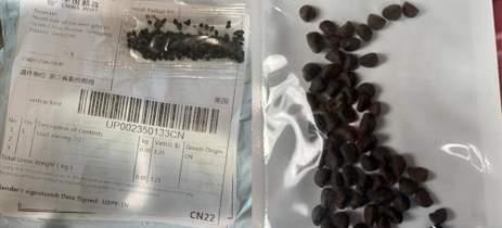 Cidasc alerta sobre pacotes com sementes misteriosas vindas da China