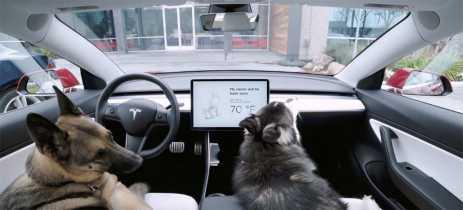 Tesla trabalha em solução para corrigir perigoso bug no Dog Mode