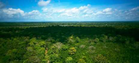 Drones da DJI são utilizados para ficar de olho na saúde da floresta amazônica