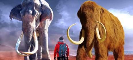 Cientistas querem ressuscitar mamute com células de 28.000 anos atrás