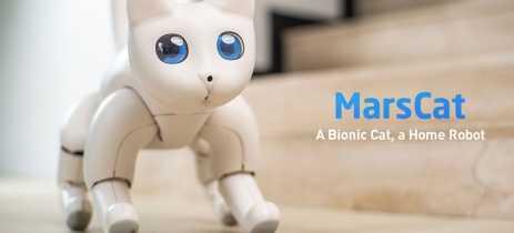 MarsCat é um gato robô chinês que desenvolve personalidade única