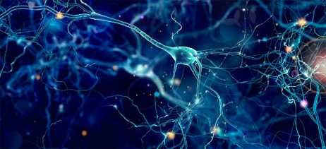 Engenheiro cria super câmera que pode tirar fotos até de neurônios funcionando