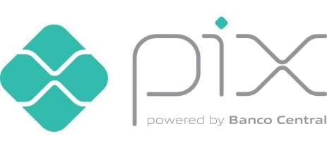 Pesquisa indica que Pix impulsionará vendas do e-commerce na Black Friday
