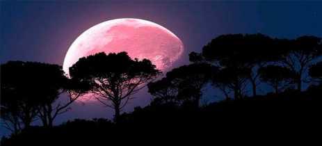 Superlua Rosa vai poder ser vista de qualquer lugar do Brasil hoje