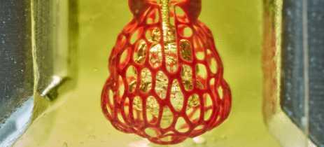 Cientistas conseguem replicar rede vascular complexa com impressão 3D