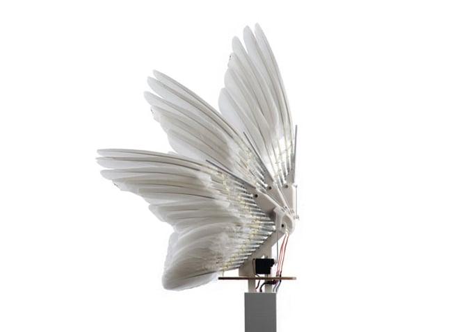 Pombo drone consegue dobrar asas para se tornar mais ágil