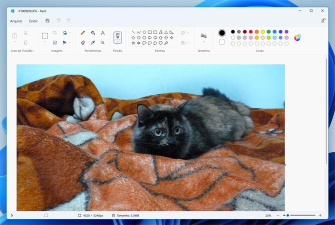 Windows 11: Confira as principais novidades do novo sistema