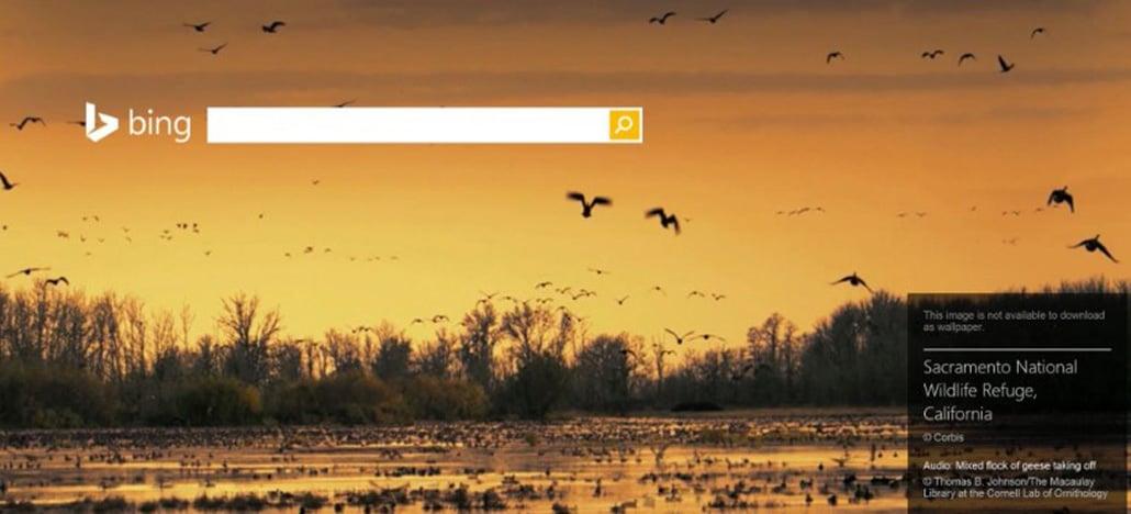 Bing agora utiliza inteligência artificial para melhorar a pesquisa de imagens