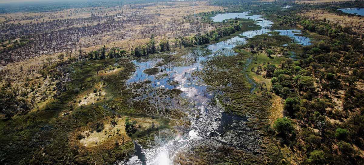 Evidência de DNA sugere que humanidade surgiu no norte de Botswana
