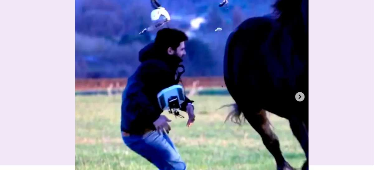 Cavalo atropela piloto de drone FPV - veja o vídeo