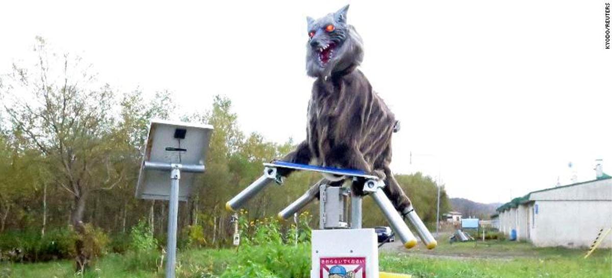 Veja o assustador lobo-robô japonês feito para espantar ursos