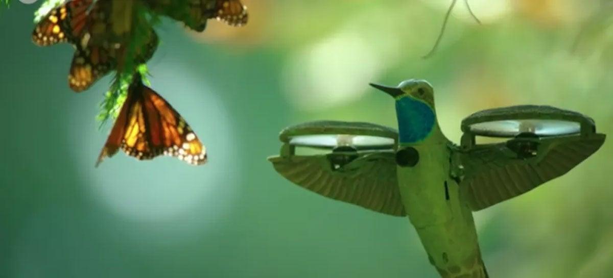 Drone disfarçado de beija-flor captura imagens incríveis da natureza