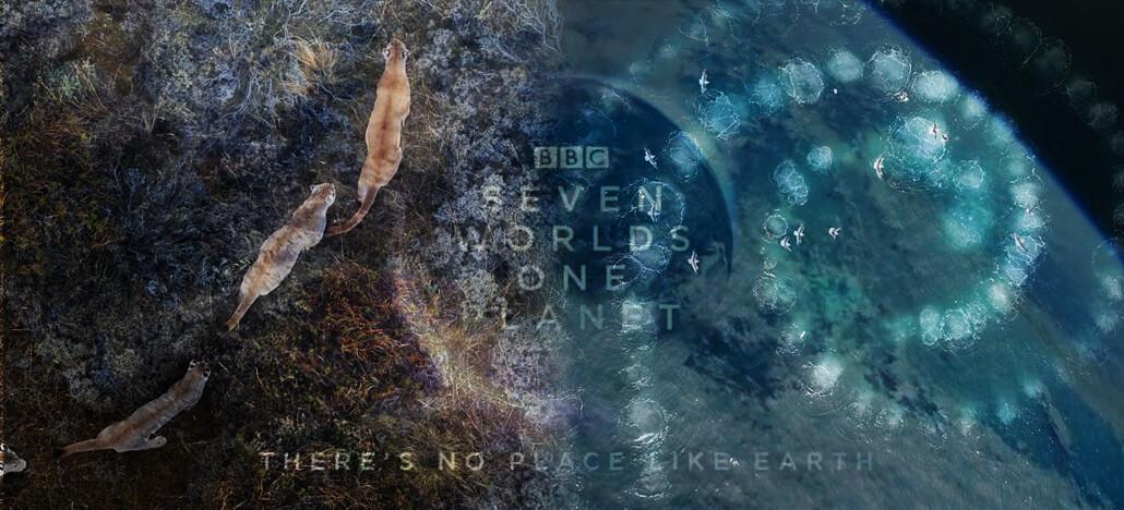 Confira as imagens capturadas por drones na série Seven Worlds, One Planet!
