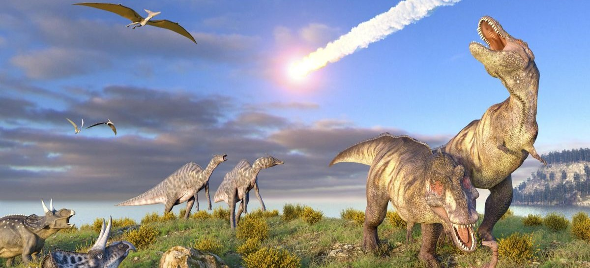 A cada 27,5 milhões de anos temos uma nova extinção em massa na Terra, diz estudo