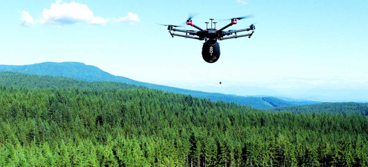 Drone Flash Forest planta árvores 10x mais rápido que humanos