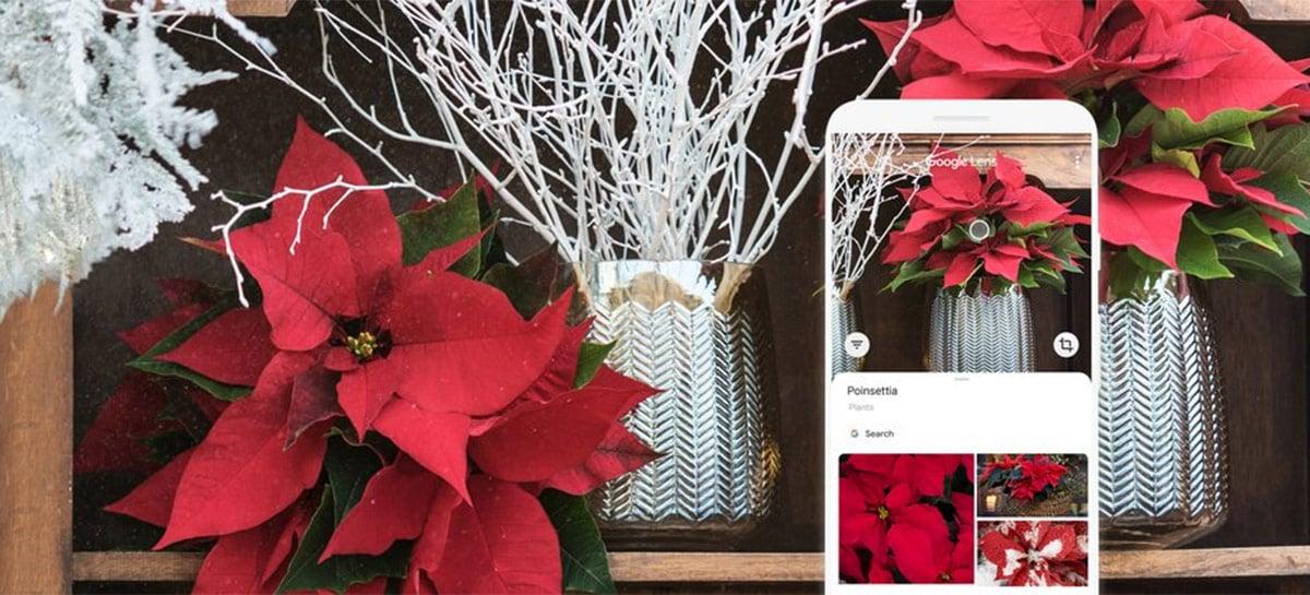 Google Fotos ganha mais recursos do Google Lens para usar diretamente nas imagens