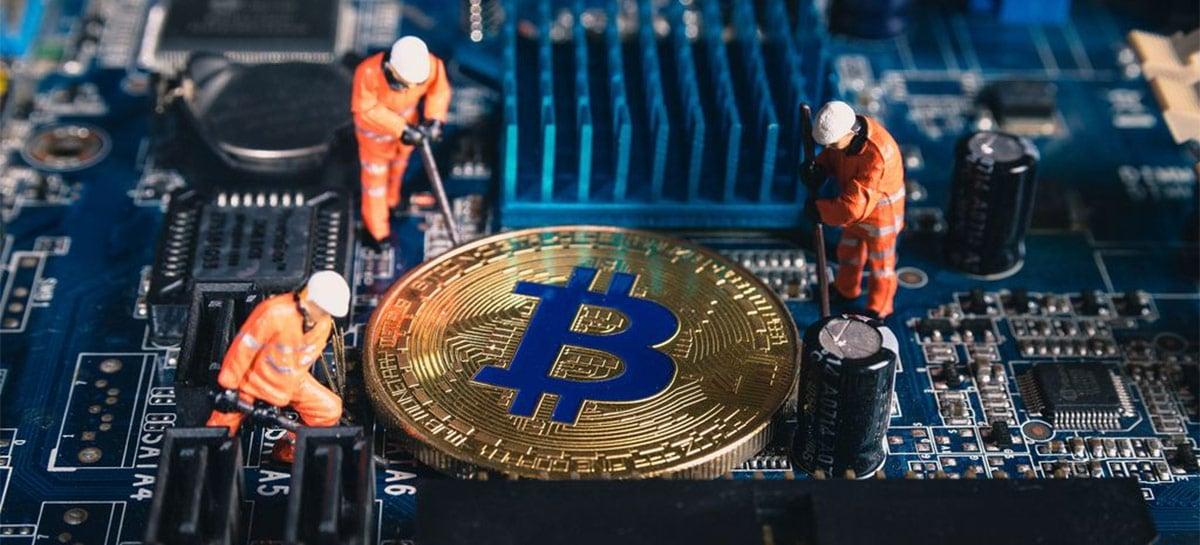 Polícia pensava ter encontrado plantação de maconha, mas era mina de Bitcoin