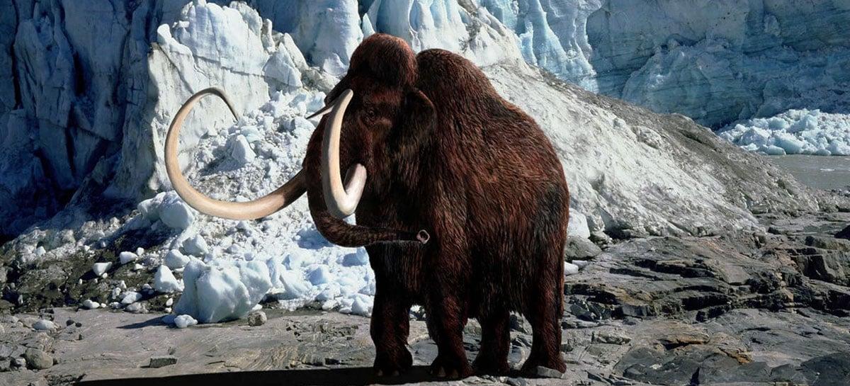 Empresa investirá US$ 15 milhões para dar vida a mamute extinto há 4 mil anos