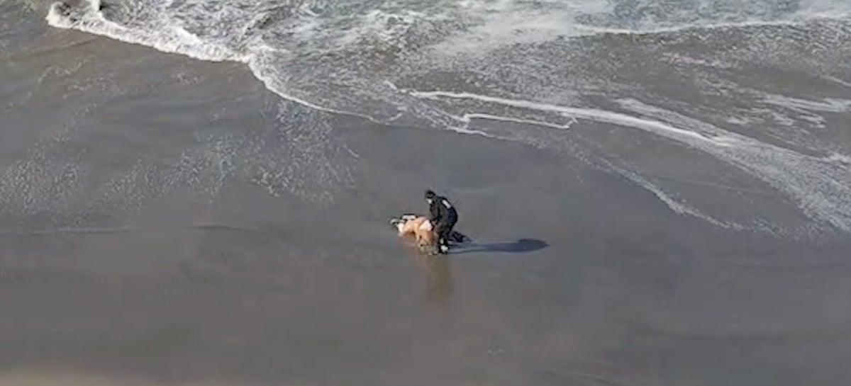 Operador de drone Mavic Air 2 resgata mulher incapacitada em praia nos EUA