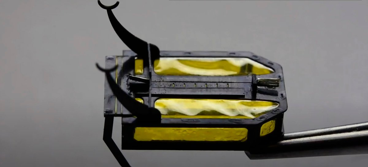 Conheça o RoBeetle, besouro robótico que pode viajar mais de duas horas sem bateria
