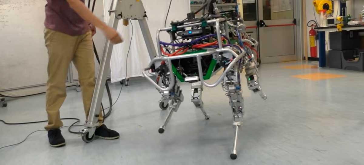 Cientistas estão treinando robô de quatro patas para andar em barras de equilíbrio