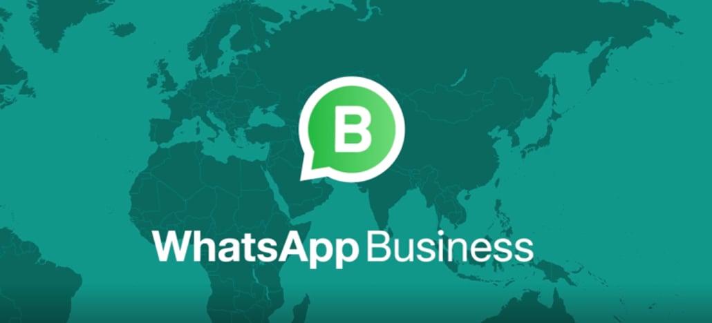 WhatsApp Business processará quem usar o aplicativo para enviar mensagens em massa