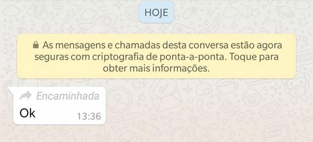 WhatsApp vai avisar quando uma mensagem for encaminhada